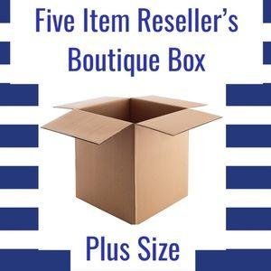 Five Item Reseller's Boutique Box (Plus Size)